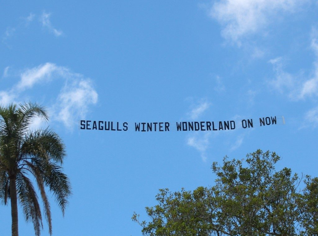 seagulls-aerial-advertising